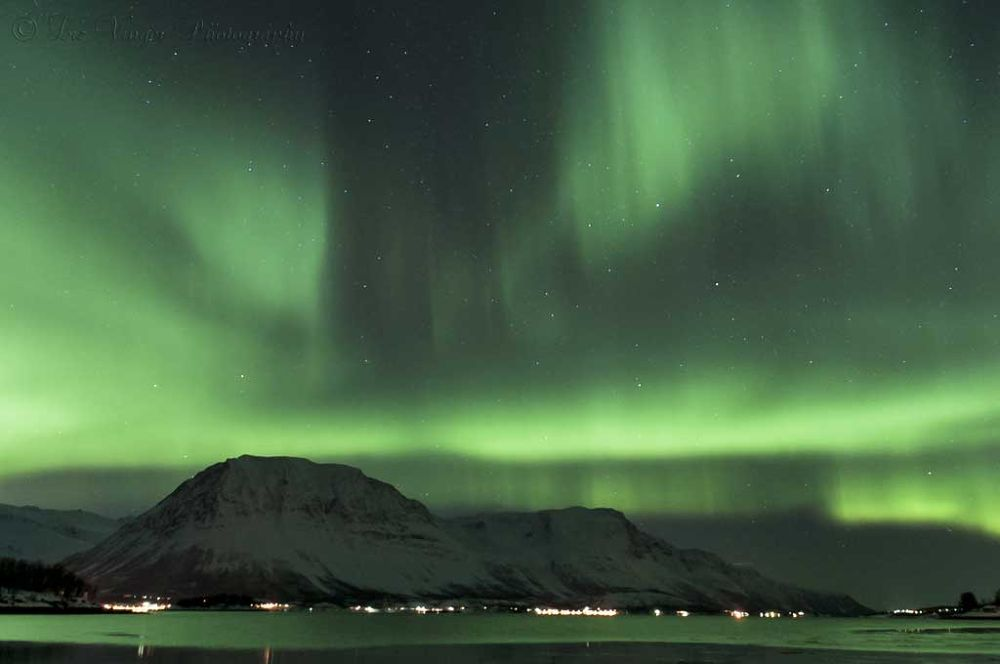 Photo in Astrophotography #aurora borealis #northern lights #north norway #troms