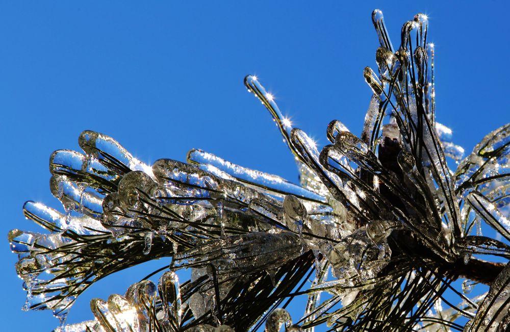 Ice Storm 12 by Roland Lavigne