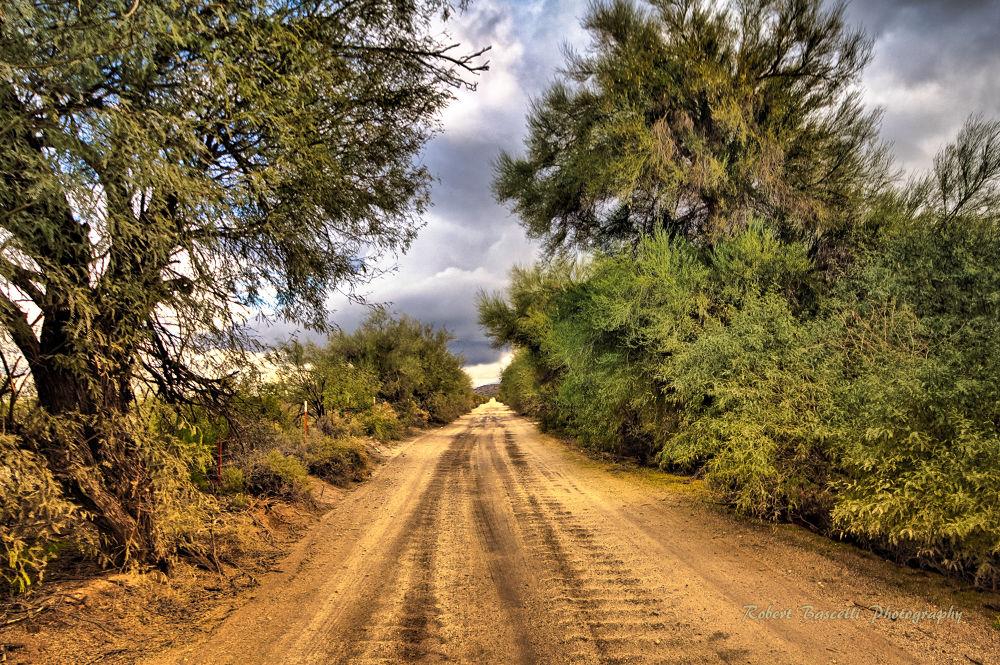 Arizona Backroad by RobertBascelli