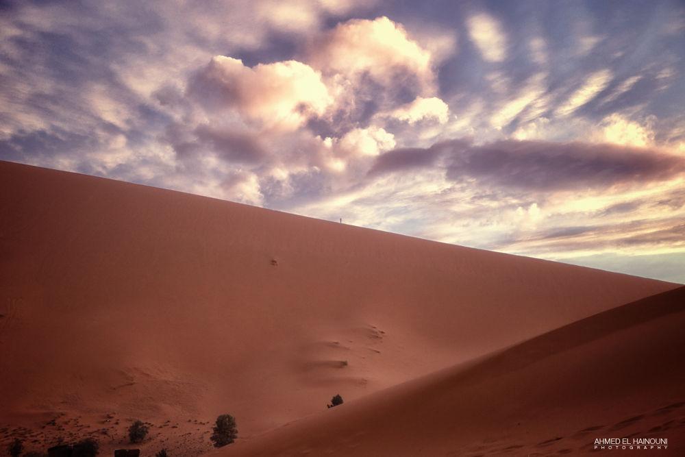 _MG_6862 by Ahmed El Hainouni