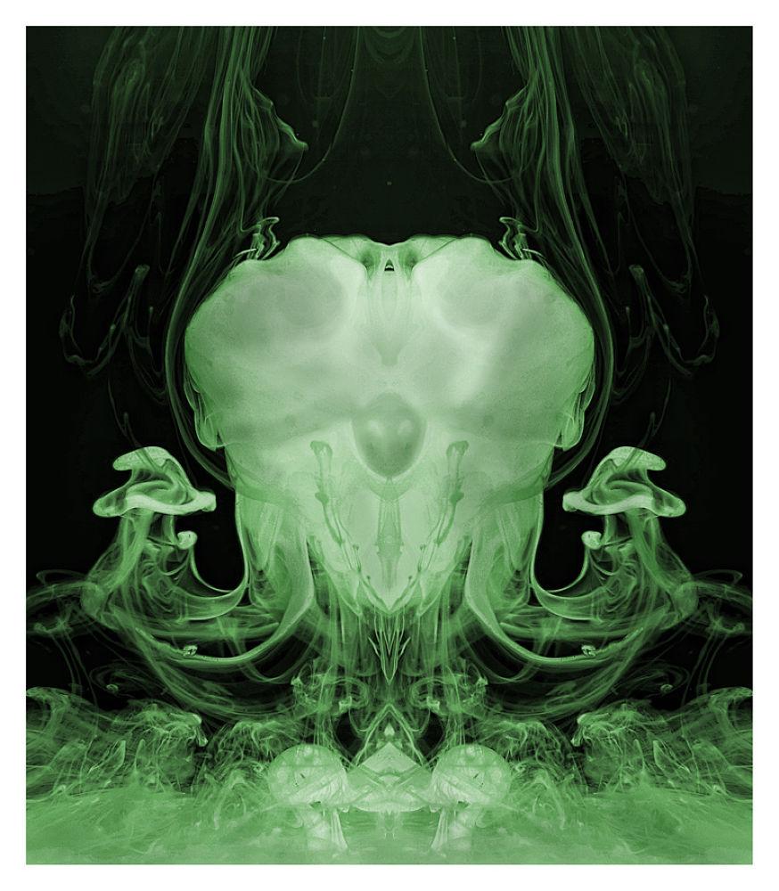 medusa-sinuosa by rossanofaltoni