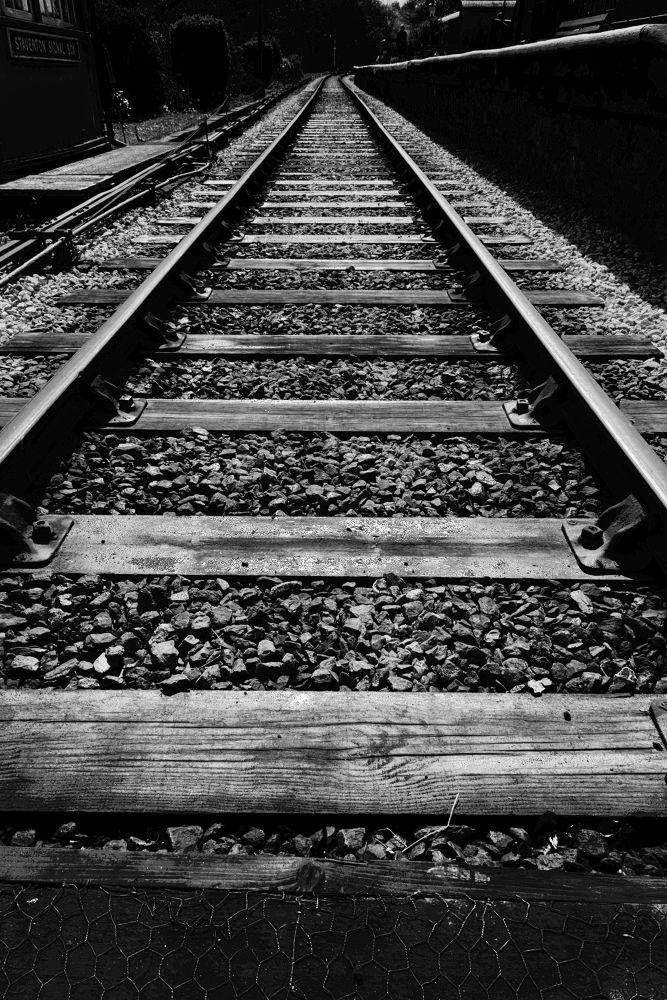 Old Train Line, Devon by Blackalder Photography