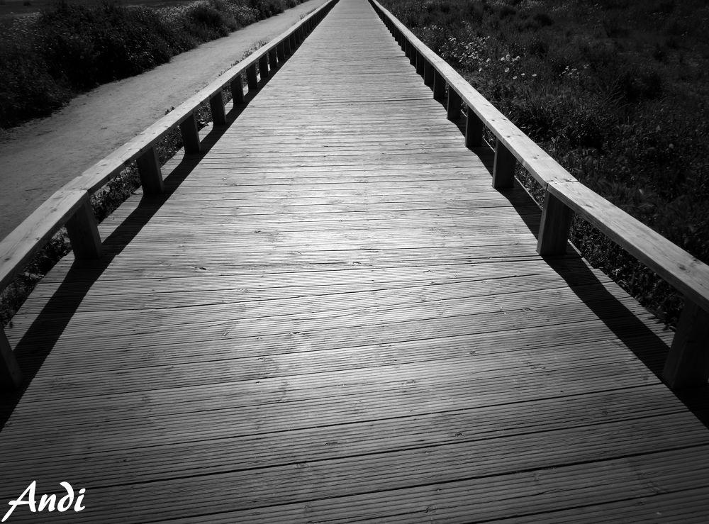 way by AndiRocha