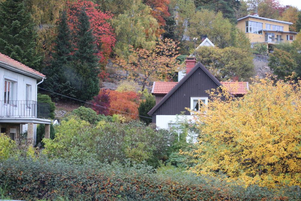 Gothenburg / Sweden/ Fall 2013 by alirezamehrdad96