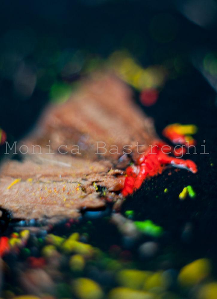 colore dei giorni8 - blood by monicabastreghi