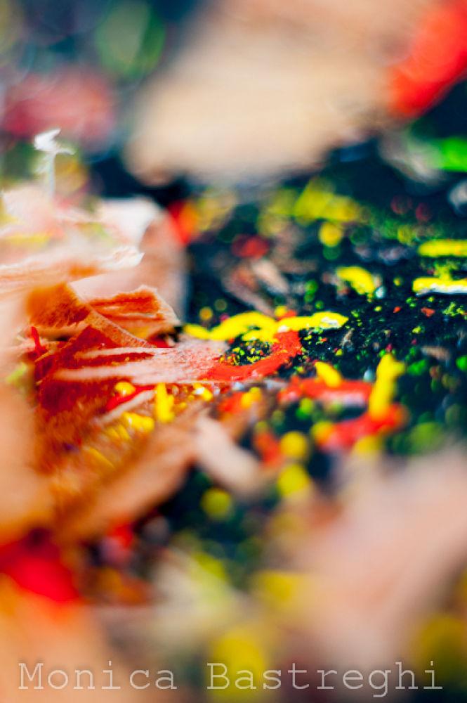 colore dei giorni9 - drug by monicabastreghi