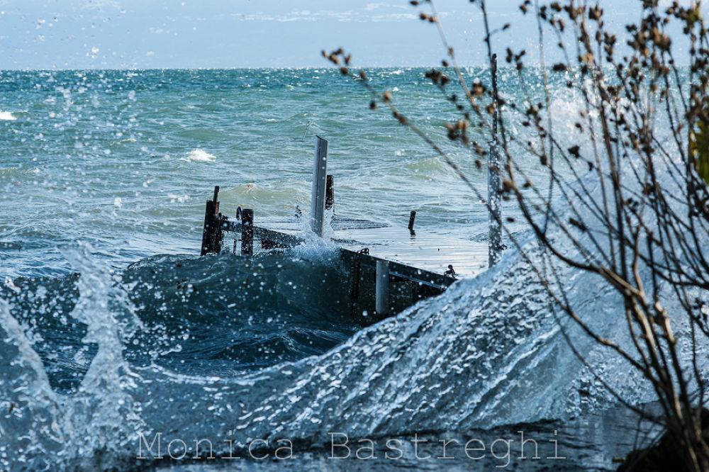 splash by monicabastreghi