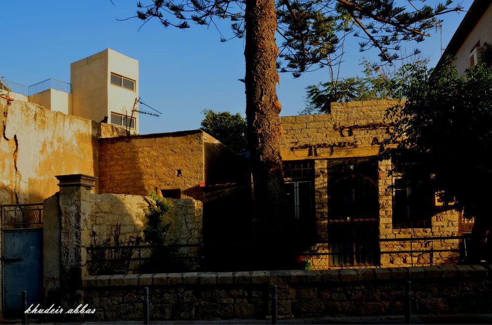 DSC_7538 . limassol . cyprus . october . 2013 by jassim