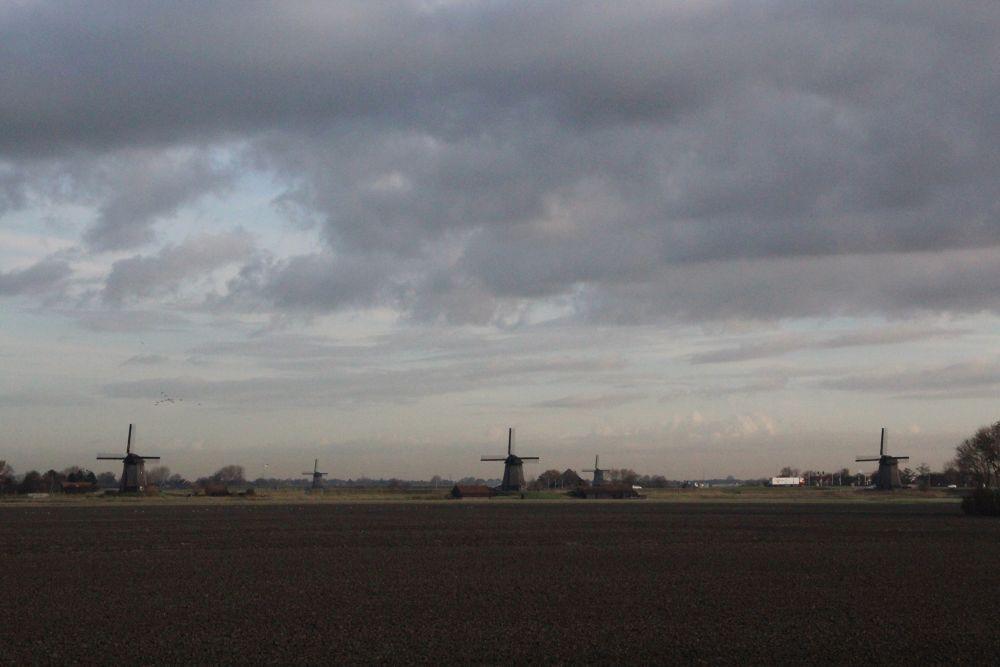 Schermer Windmills by Henk de Groot