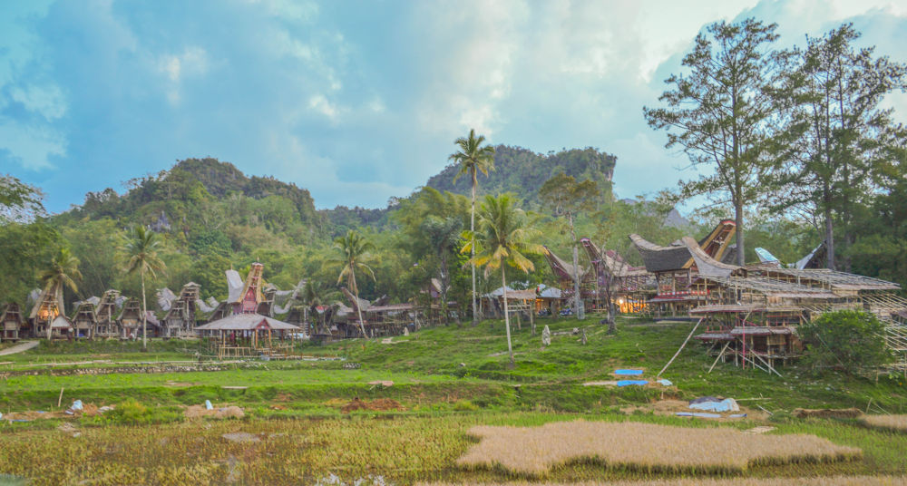 Photo in Landscape #landscape #toraja #nature #travel #traditional #houses #evening #afternoon #cloudy #ricefield #trees #sulawesi #indonesia
