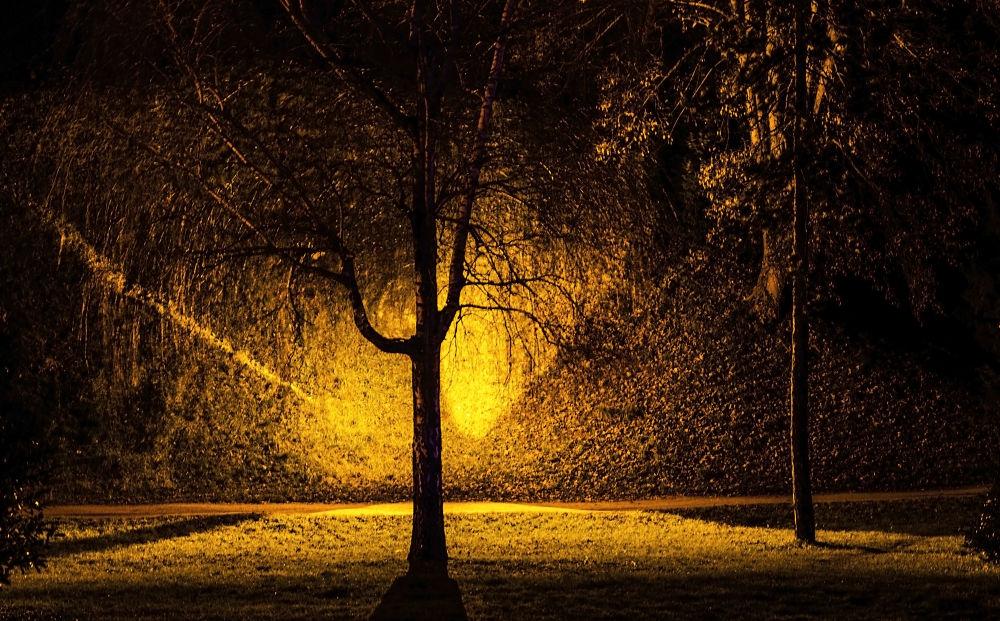 Varaždin by night by Miro Dezulovic