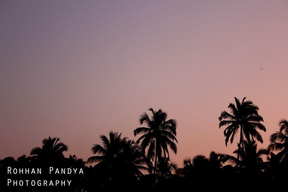 IMG_2823 by rohhanpandya