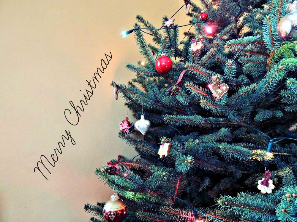 Christmas by Karolína