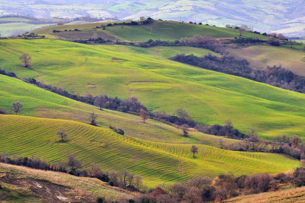 My Tuscany by MarcoBentivoglio