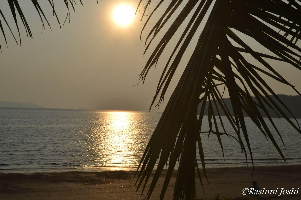 Morning  by Rashmi Joshi