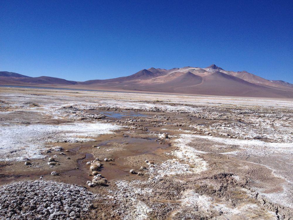 Agua en el desierto  by Daniela Mora