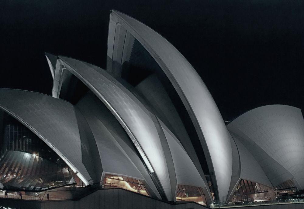 Night Time Opera House  by Nick Cronin