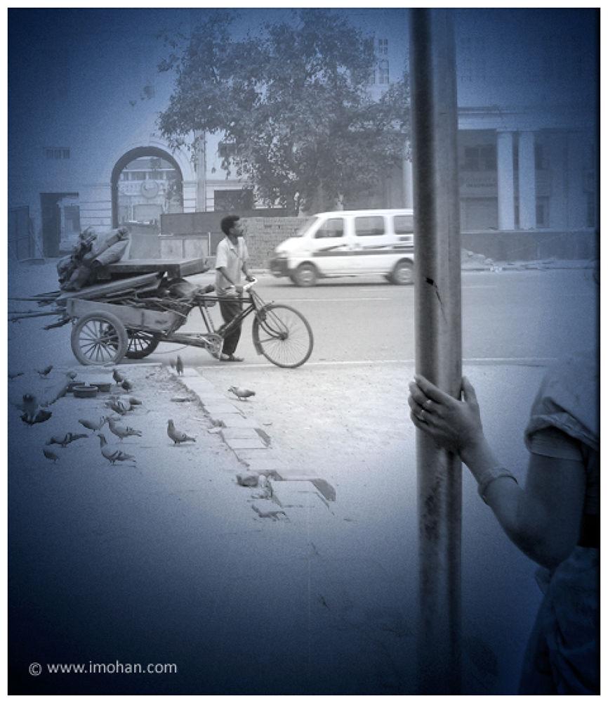 IMG_5001 by rammohan4b
