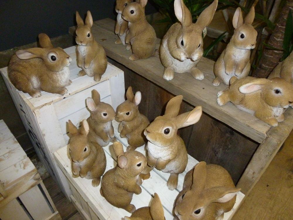 Rabbits by Zrnho Correy