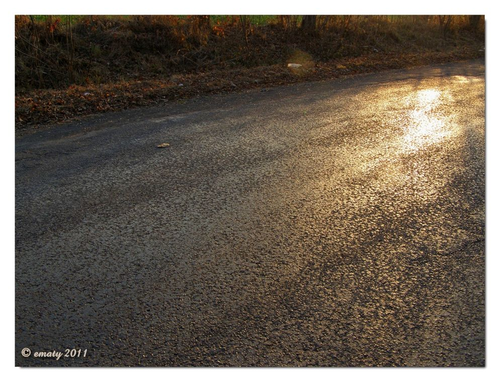 The road by ErikaM