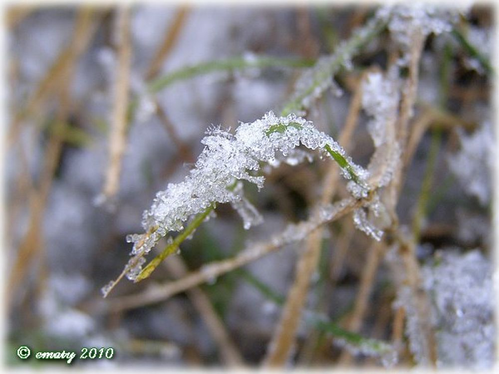 Crystals by ErikaM