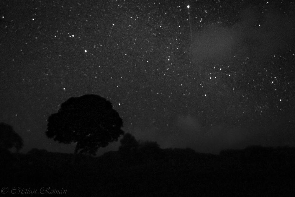 Sky in B&W by Cristian Román Palacios