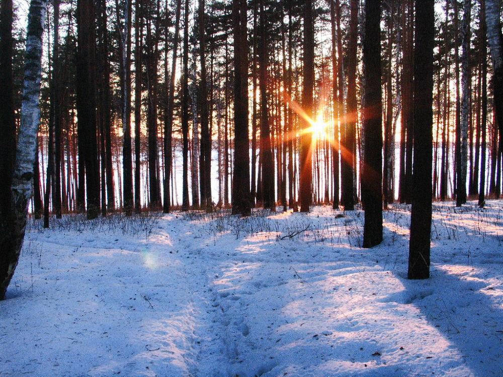 Winter by iensueno