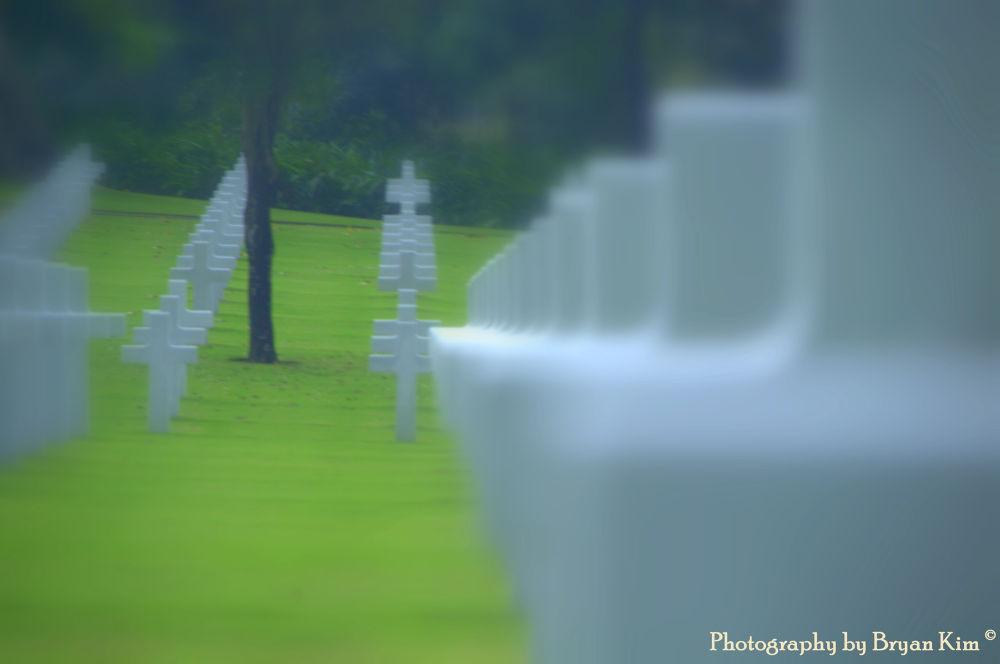 In Memory Of..... by cloudylemonade