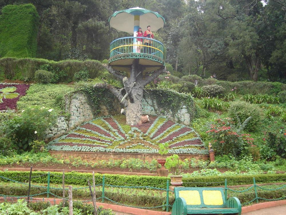 ooty botanical garden by TrilokDubey