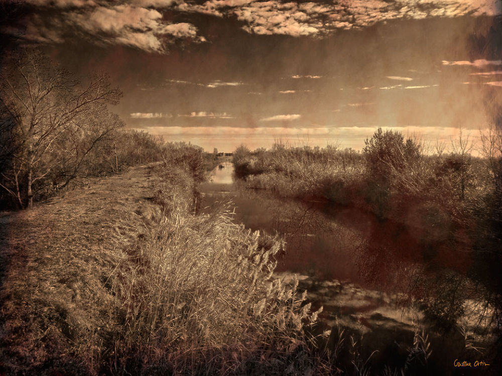 Photo in Landscape #landscape #vintage #photography #wetlands