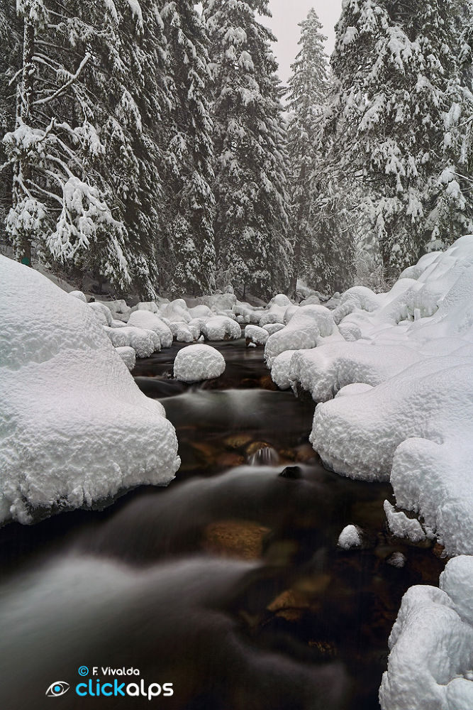 Boreon River in winter during snowfall by VivaldaFabio