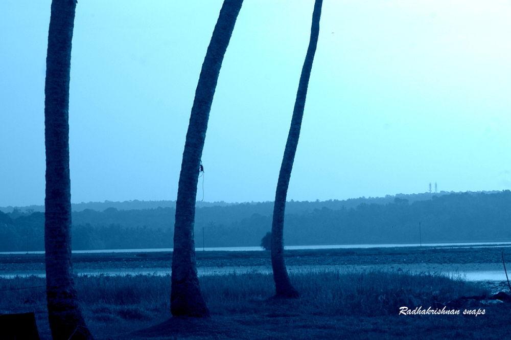 Vellayani Lake by Radhakrishnan. AG
