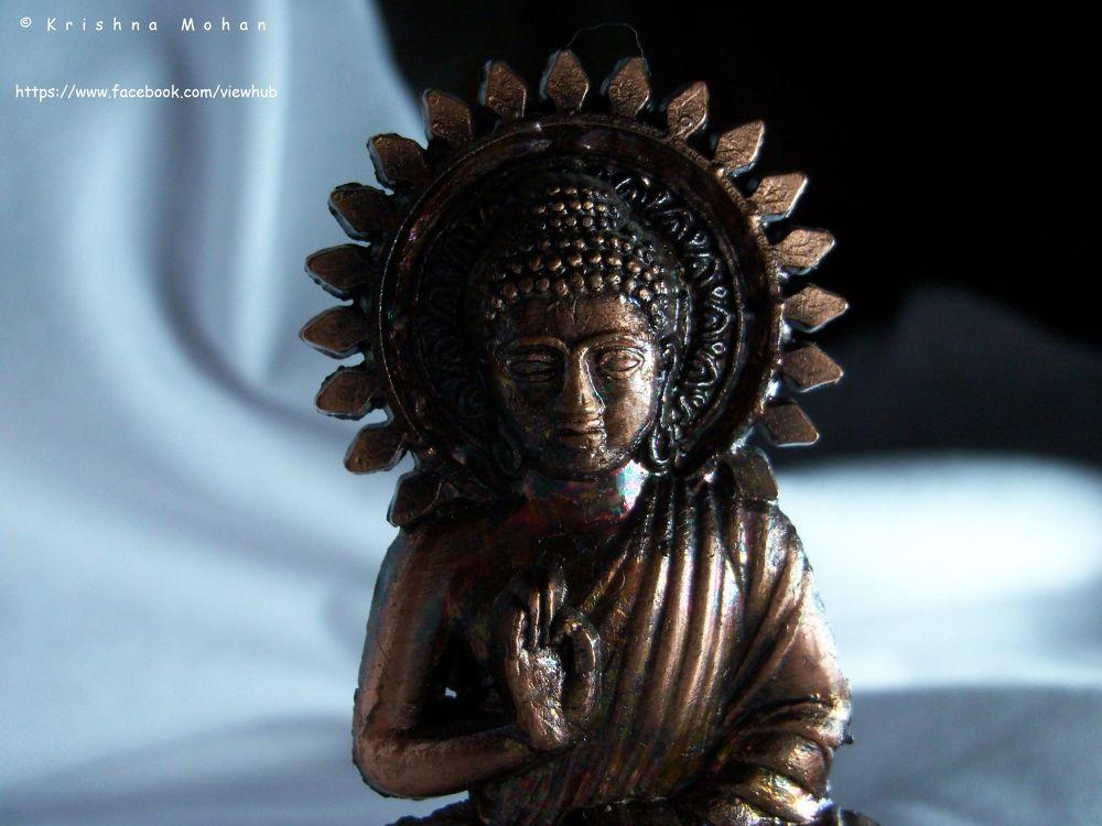 100_8340 by krishna Mohan