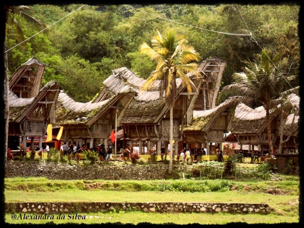 TONGKONGAN (House of Toraja) @South Sulawesi, Indonesia by ALEXANDRA da SILVA