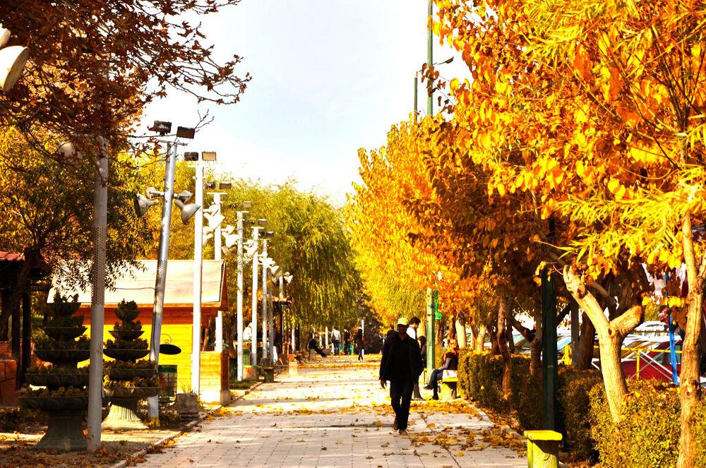 Walking in Autumn  by Abolfazl