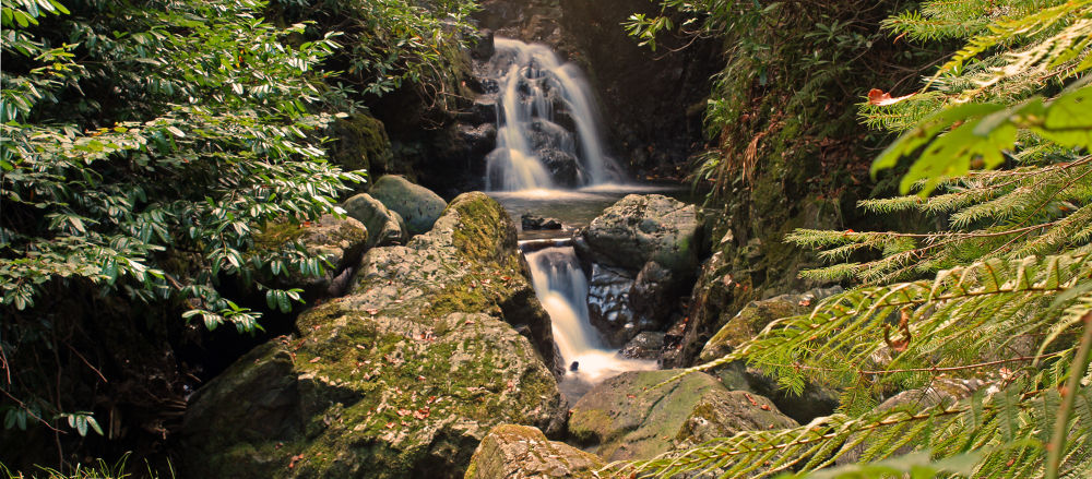 Tullymore by andyhiggs2