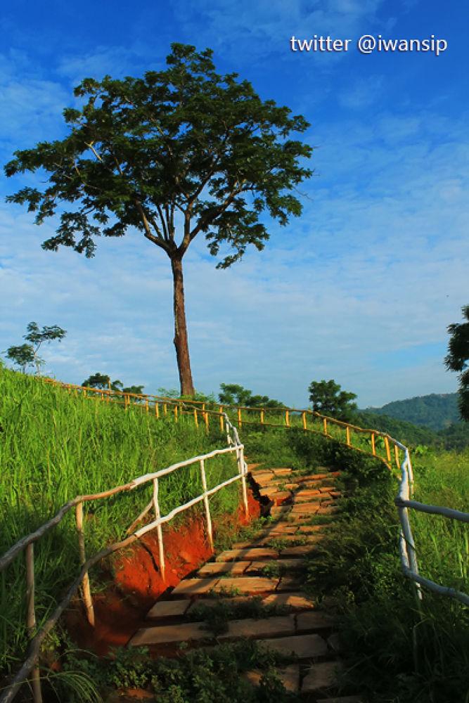 Bukit Pandang Mutun Lampung by Iwan Setiawan