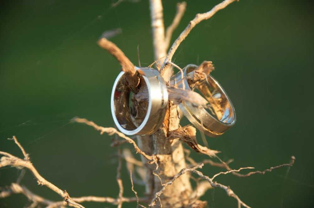Wedding rings on tree by maradesign