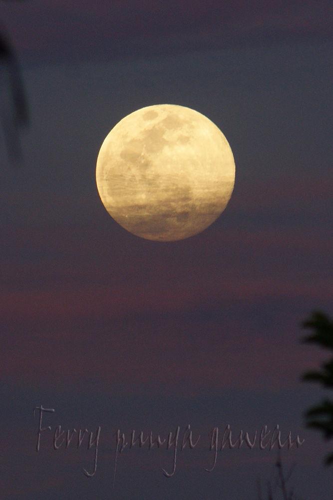 Full Moon by Ferry Lase