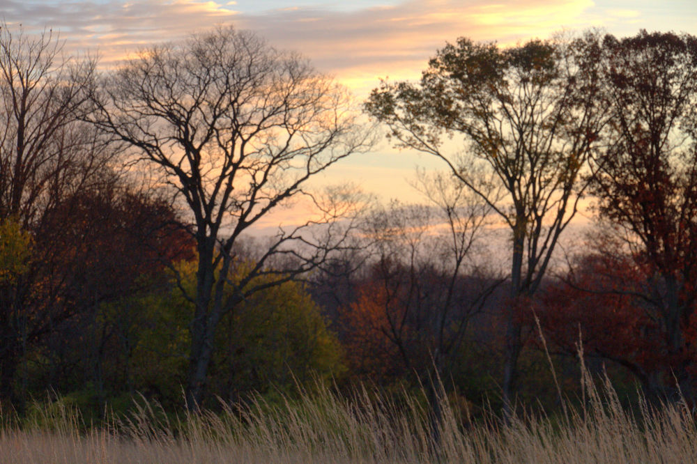 Sunrise In New Carlisle 11-9-2013 by tomminutolo