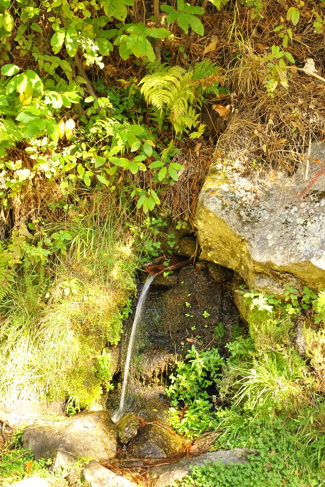 fuente natural by alparusanfotos