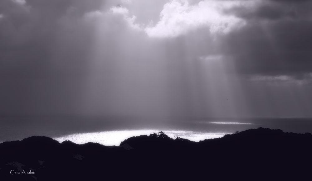 rays of light by CeliaAnahin