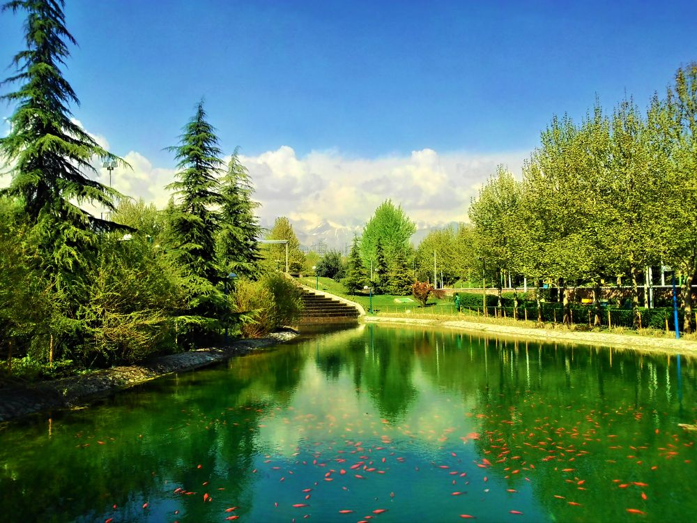 Park by ahmobayen