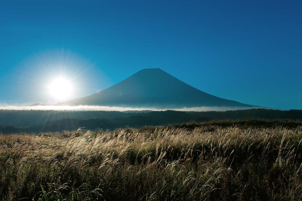 Fuji susuki by GinjiFukasawa