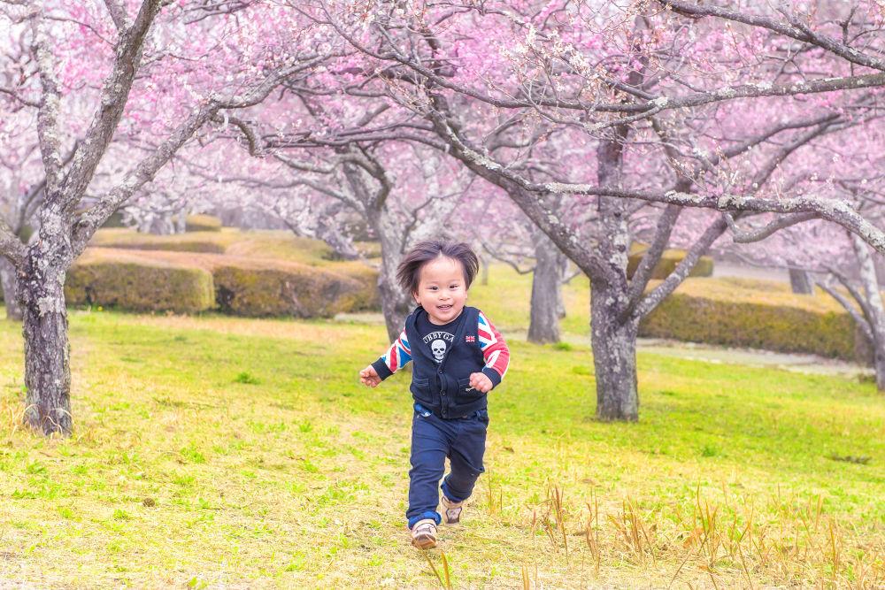 Spring Run!! by GinjiFukasawa