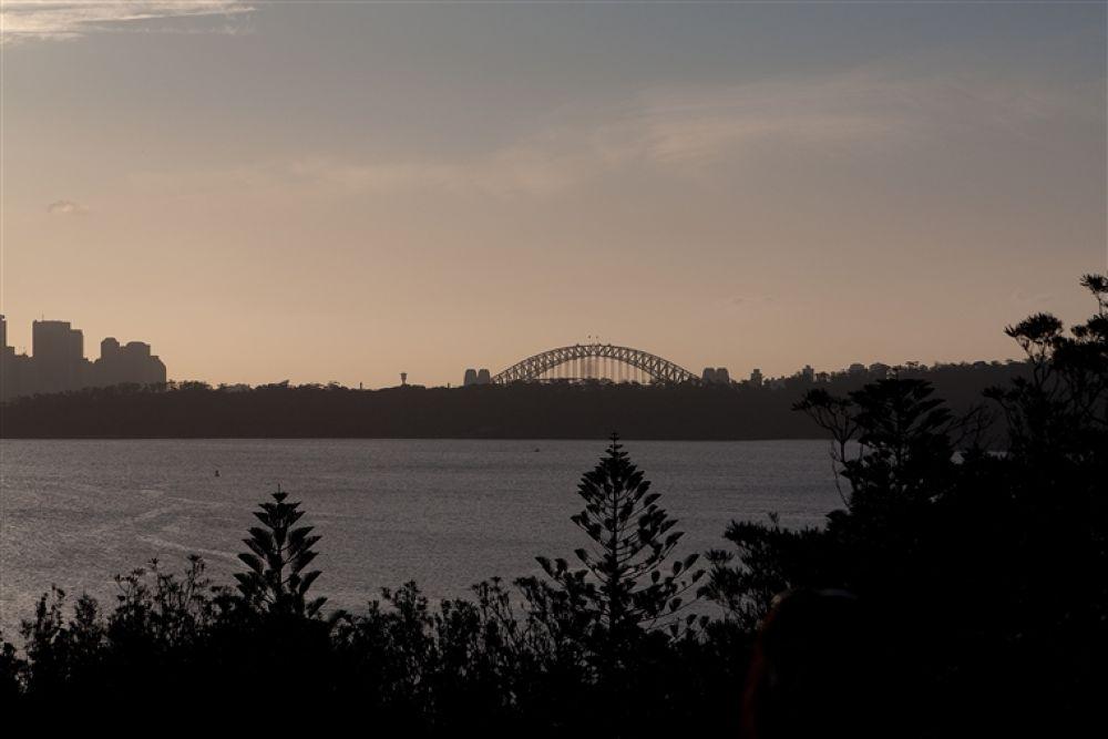 Photo in Random #sydney