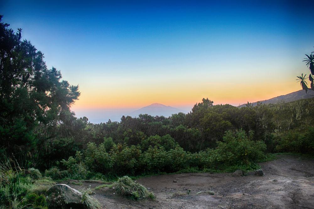 From Kilimanjaro. by mountaingoat