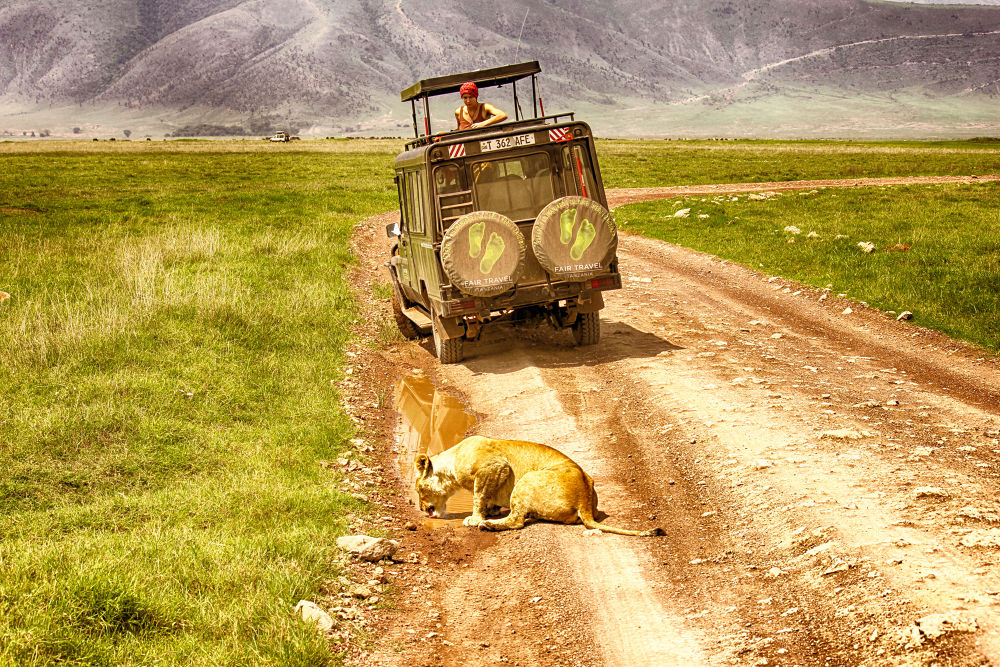 Thirst In Tanzania, Africa. by mountaingoat