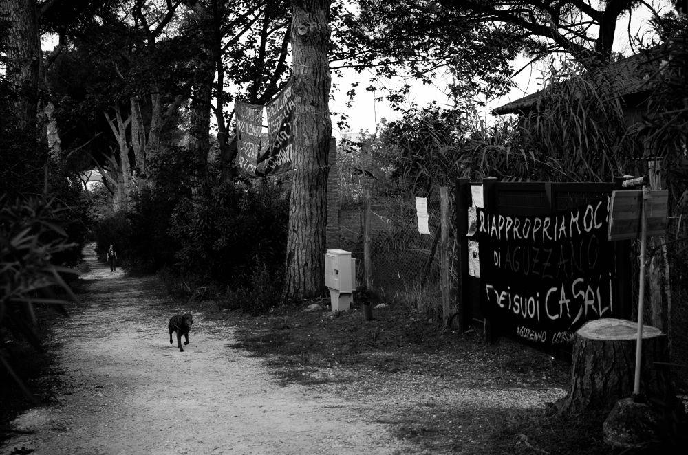 Foto Parco Aguzzano riappropriamoci by marcorocchi12