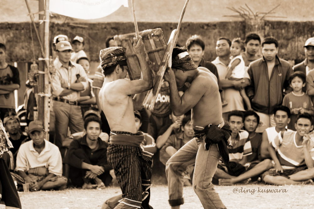 Traditional sport ( the names Presean in lombok island , indonesia ) by ading kuswara